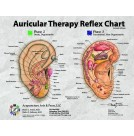Auricular Therapy Reflex Desk Reference Cards (BC113)