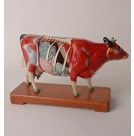 Cow Acupuncture Model on Wooden Stand (HM32)